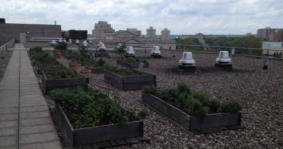 roof1-570x300